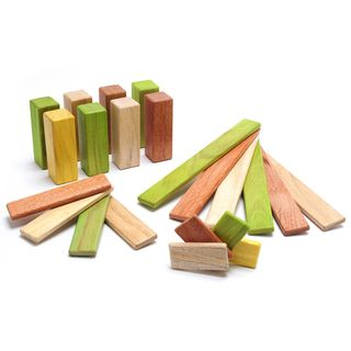 Tegu-magnetic-wooden-blocks-endeavor-22-piece-set-jungle-p-11-022-f